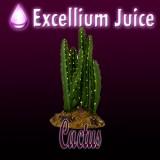 Concentré cactus 10ml